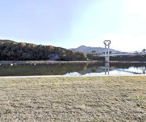 잔디광장 사진 보기